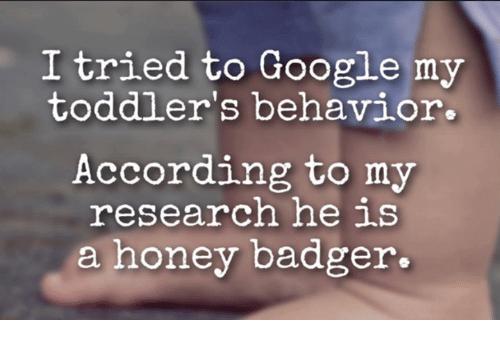 B2a - toddler memes