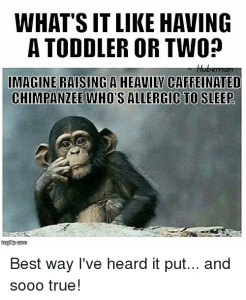 E5 - toddler memes
